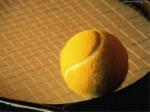 Школа тенниса «Престиж»