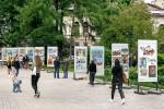 В Мариинском парке открыли выставку детских рисунков