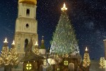 Новый 2021 год киевляне смогут встретить в «сказочном лесу»