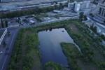 В центре Киева создадут парк мечты с озером в форме кота
