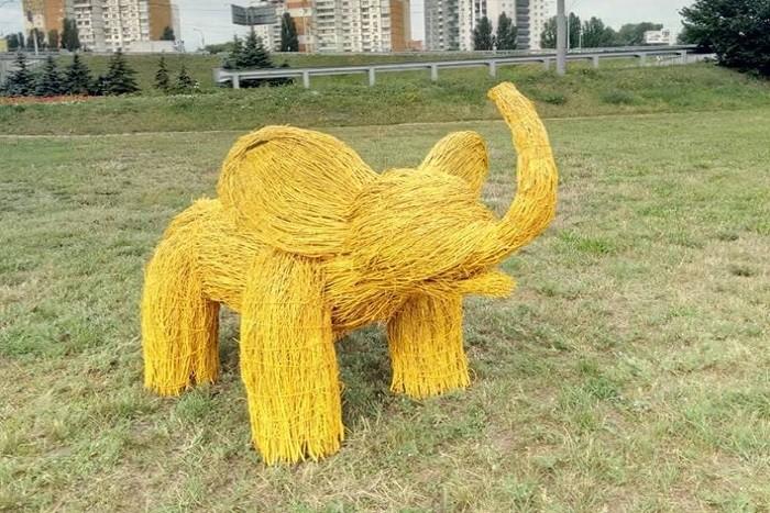 В Голосеевском районе появились слоны