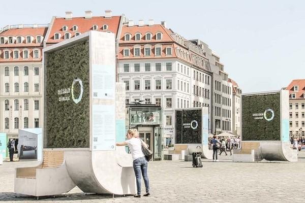 На Почтовой площади установили стену с мхом для очистки воздуха
