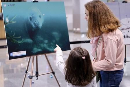 В Киеве открыли фотовыставку к 200-летию открытия Антарктиды