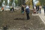 На Русановской набережной высадили 15 кленов