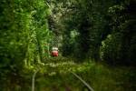 По выходным и праздникам трамваи № 17 будут курсировать до Пущи-Водицы