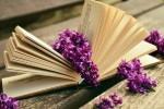 Какие книги лучше: электронные или бумажные?