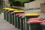 Ещё в одной киевской школе начали сортировать мусор