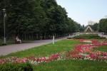 В 2018 году в Киеве обновят 128 парков и скверов