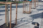 27 сентября на Контрактовой площади откроют сквер № 3