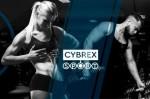 Интернет магазин спортивного питания «Cybrexsport» и его преимущества