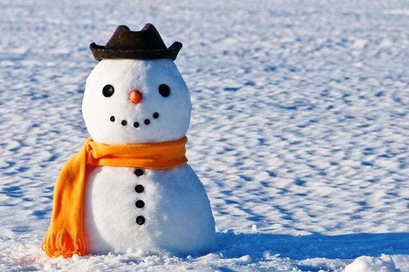 Киевляне смогут помериться снеговиками