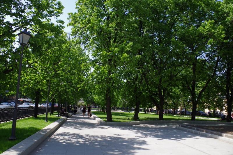 В Шевченковском районе появится новый сквер