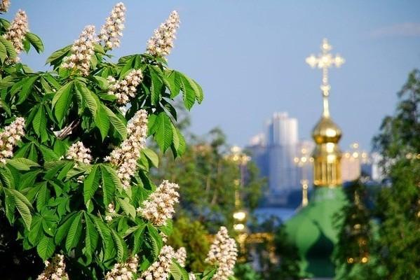 «Космическая симфония» и национальный рекорд: на Контрактовой площади отпразднуют День Киева