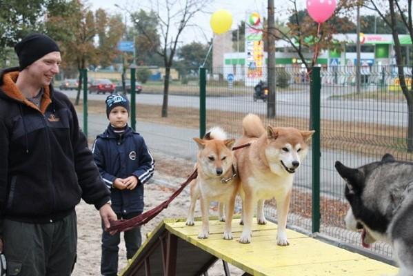 На Троещине появилась современная площадка для собак