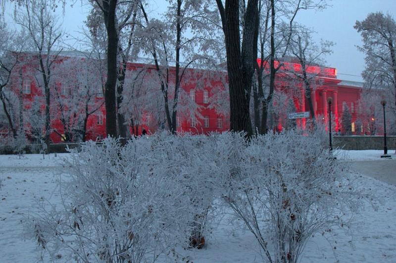 В парке Шевченко открыли памятник контрацептиву