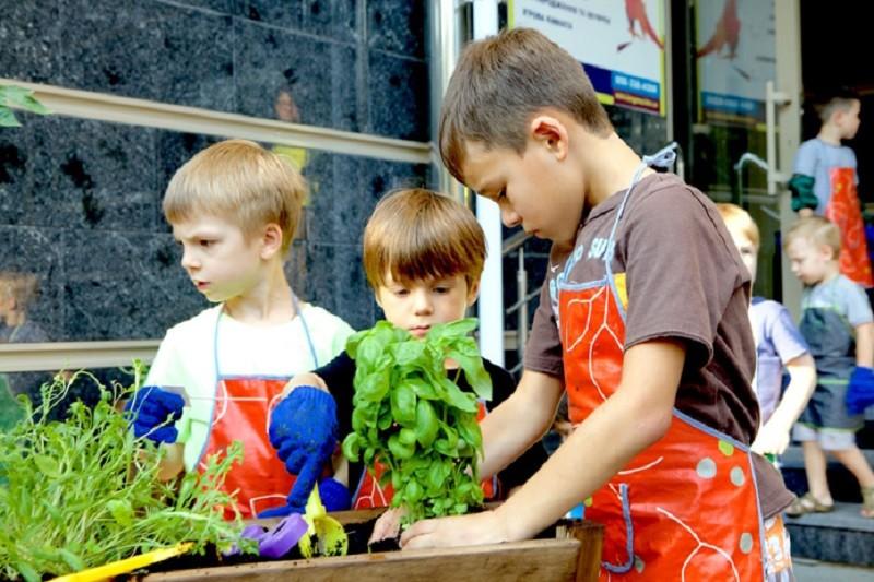При детских садах Киева создадут 20 городских ферм