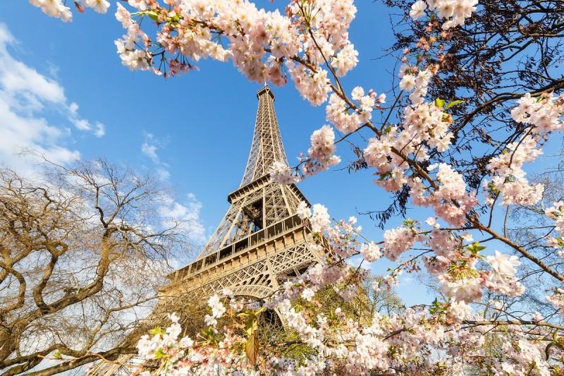 В Киеве пройдет грандиозный фестиваль, посвященный Франции