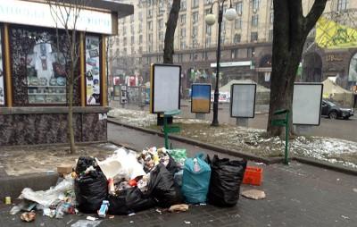 В Киеве штрафы за мусор могут вырасти до 17 тысяч гривен