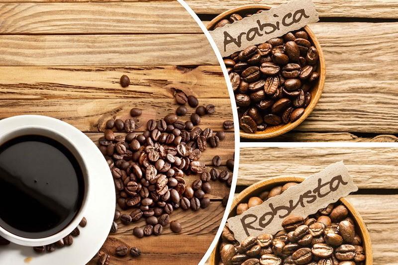 Арабика и робуста. Купить кофе в зернах лучших сортов