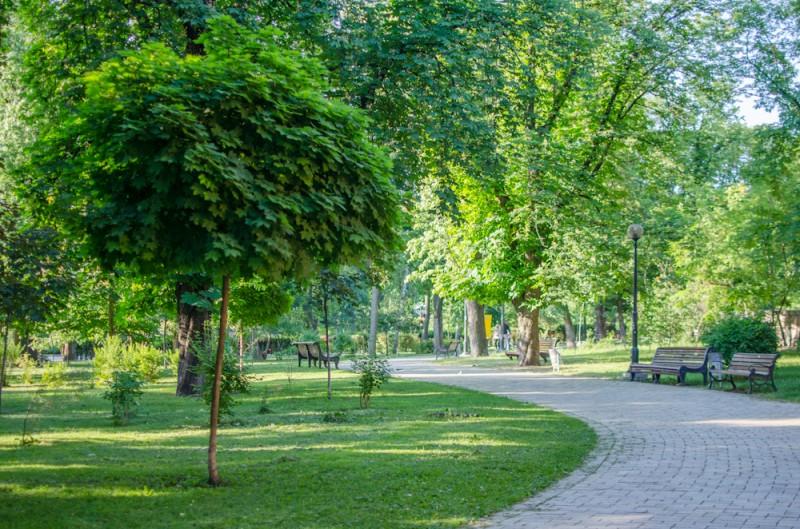 В Днепровском районе обустроят 16 новых скверов